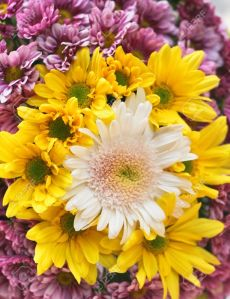Women grouped together are like a bouquet of wild flowers!